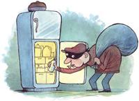 fridge raider