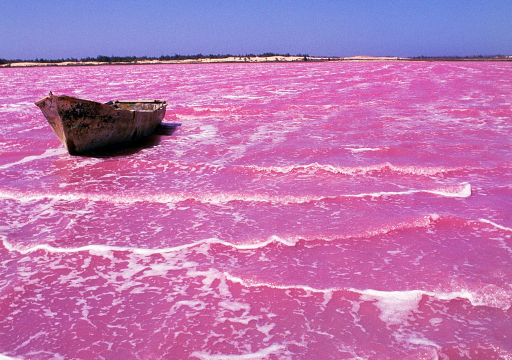 What Google said the Pink Lake looks like