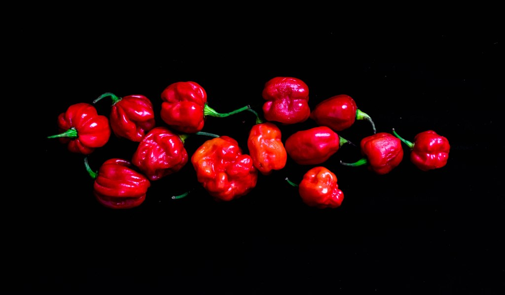 Beautiful hot spicy Nigerian pepper called Atarodo isolated on black background. Red Chilli pepper on Black background